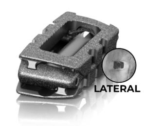 Micro Invasive Lateral
